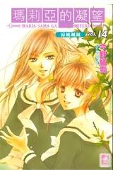 輕小說瑪莉亞的凝望(14)封面